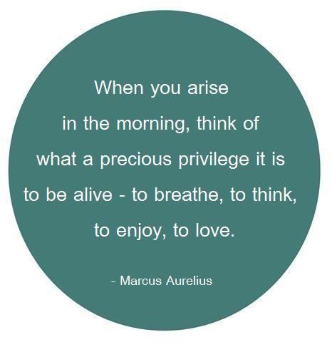 breathe, think, enjoy, love.