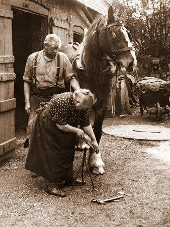 Hard at work shoeing a horse