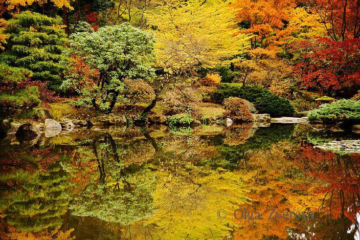 Fall colors at the japanese garden washington park for Japanese garden colors