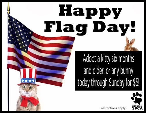 what month is flag day