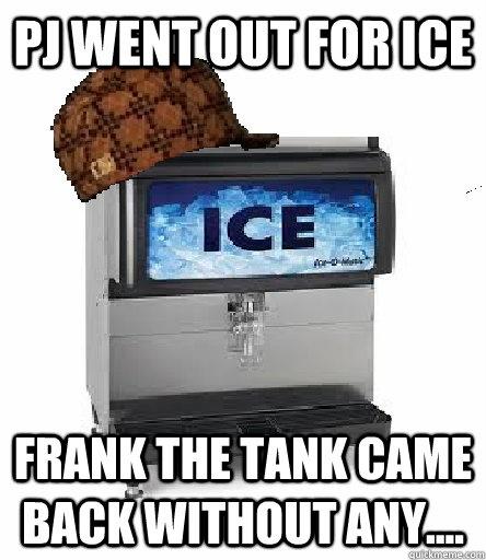 Frank the Tank | Spring Break 2013 | Pinterest