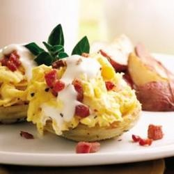 Artichoke Eggs Benedict: artichoke bottoms stand in for English muffins and I used regular bacon, poached eggs and real homemade hollandaise.