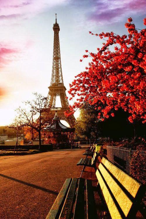 Stunning Picz: Autumn in Paris