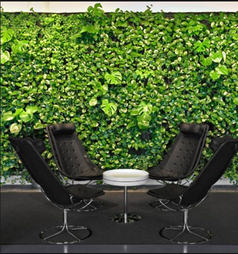 jardim vertical terraco:vertical garden / jardim vertical / parede verde