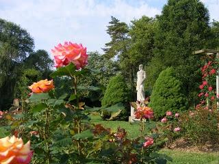 Rose garden allentown pa allentown pinterest gardens roses - The Rose Garden In Allentown Pa Lehigh Valley
