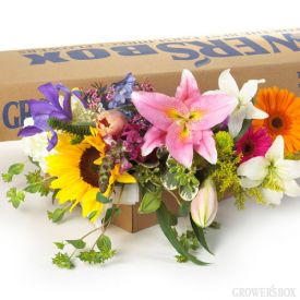Order wedding flowers in bulk and at wholesale prices from The Grower's Box! Tired of the ordinary? Check out our mixed boxes of DIY wedding flowers! Featuring 9 different types of flowers in your choice of colors! Packages of DIY wedding flowers are perfect for wedding and event decorations alike! Visit www.GrowersBox.com for more information.