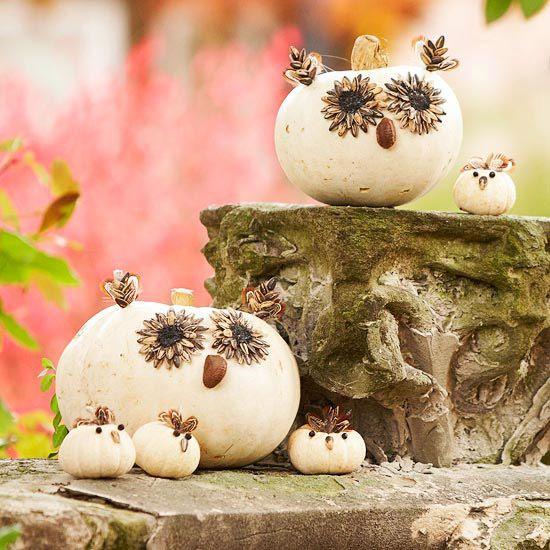 Cute Fall decorations!