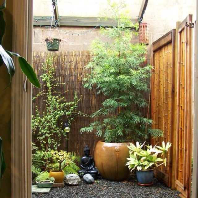Clustered Potted Plants Small Yard Pinterest