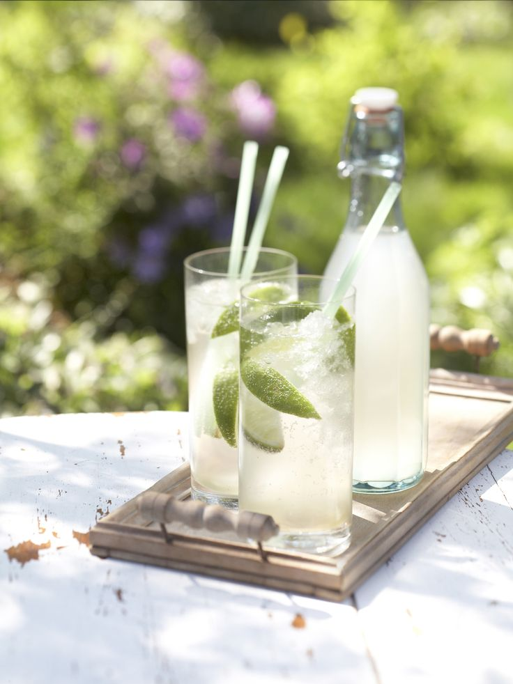ginger limeade | drink... | Pinterest