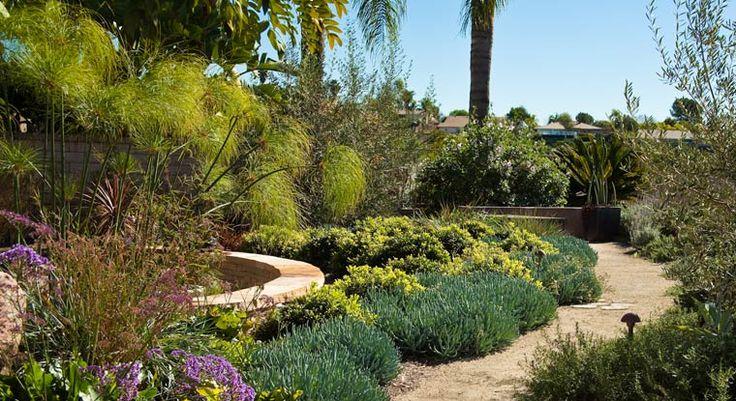 Mediterranean garden design mediterraneen garden for Mediterranean garden design