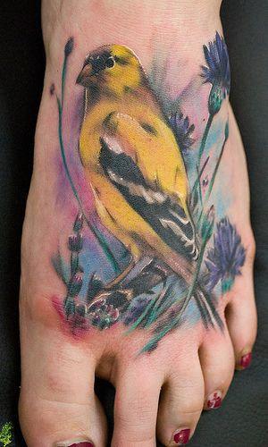 goldfinch tattoos pinterest