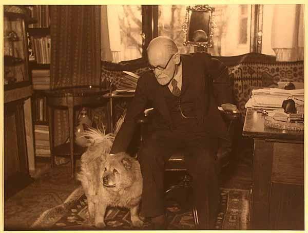 Freud y su chow chow Jofie
