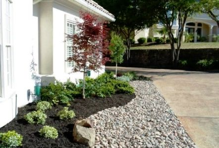 Simple landscape arizona backyard landscaping pictures for Landscaping rocks vs mulch