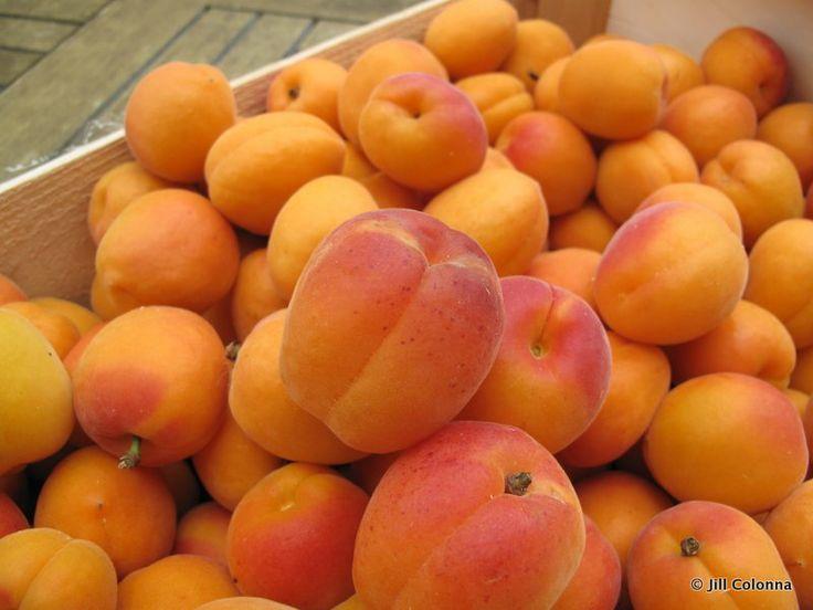 Apricot And Lavender Jam Recipe — Dishmaps