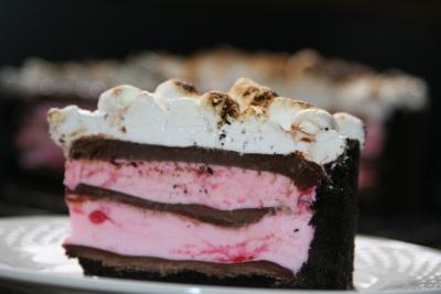 mores peppermint ice cream cake | Frozen | Pinterest