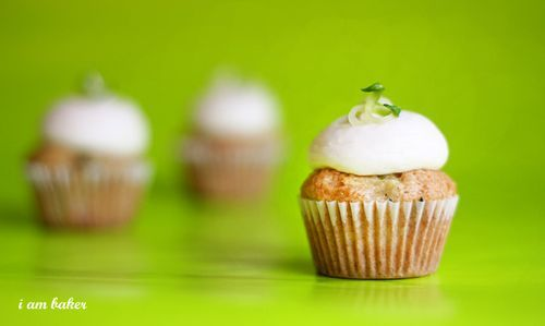 Zucchini Cupcakes & Cream Cheese Frosting- Plant Exchange Party?
