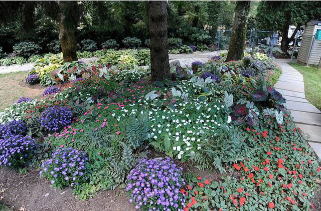 Decorating a hill semi shade maryland landscape projects for Garden shade designs