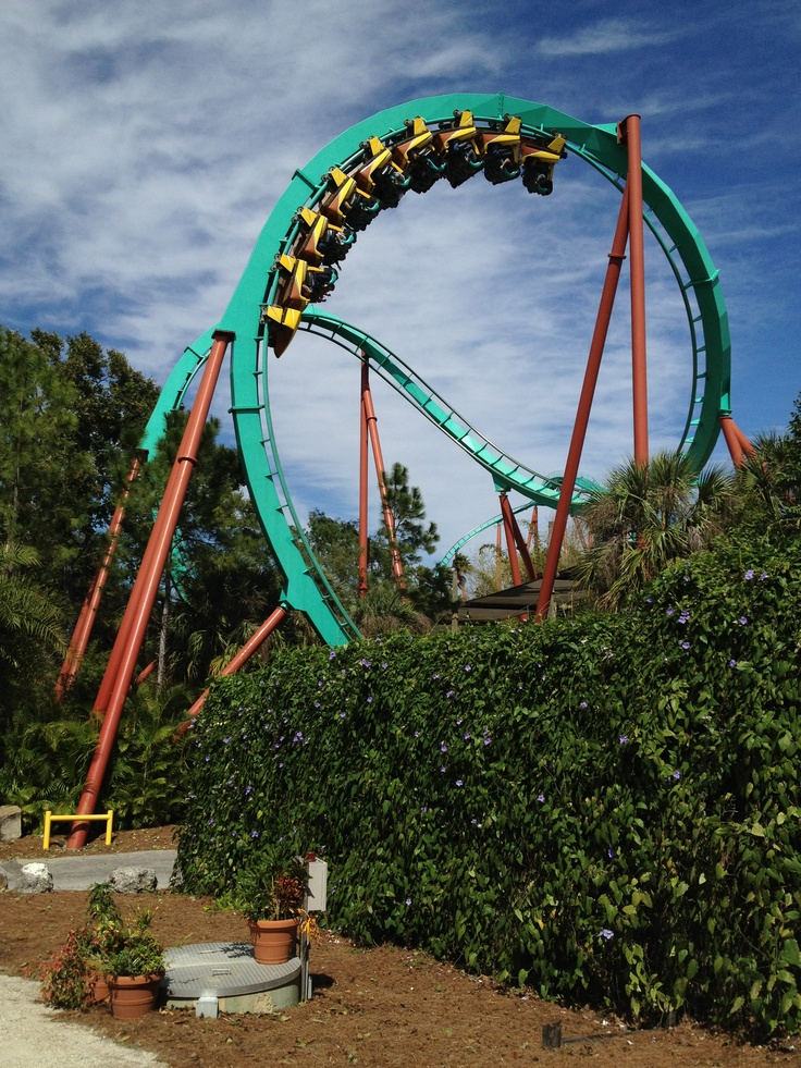 Kumba Busch Gardens Tampa Fl Ride On Pinterest
