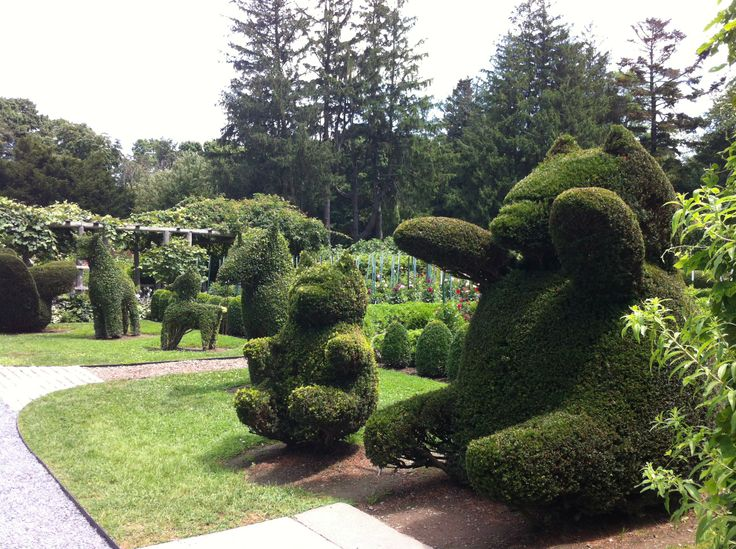 Green animals topiary garden portsmouth ri patch