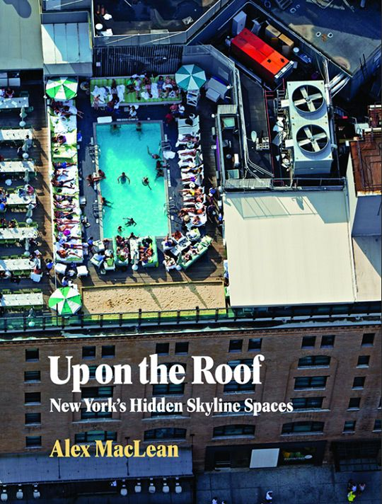 Up on the Roof: New York's Hidden Skyline Spaces by Alex MacLean