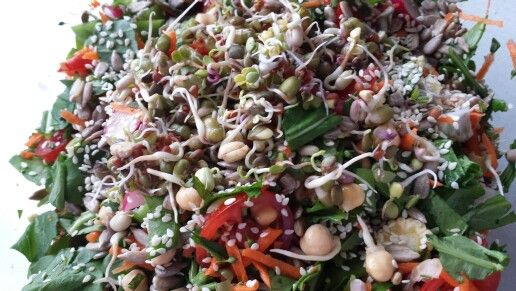 Summer sprout salad | Food & Drink that I love | Pinterest