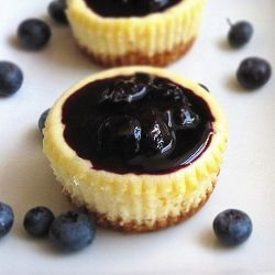 Mini cheesecake with a blueberry sauce. The secret? Coconut flakes in ...
