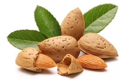 - Snack Smart! Gobble up a handful of almonds to curb those snack ...
