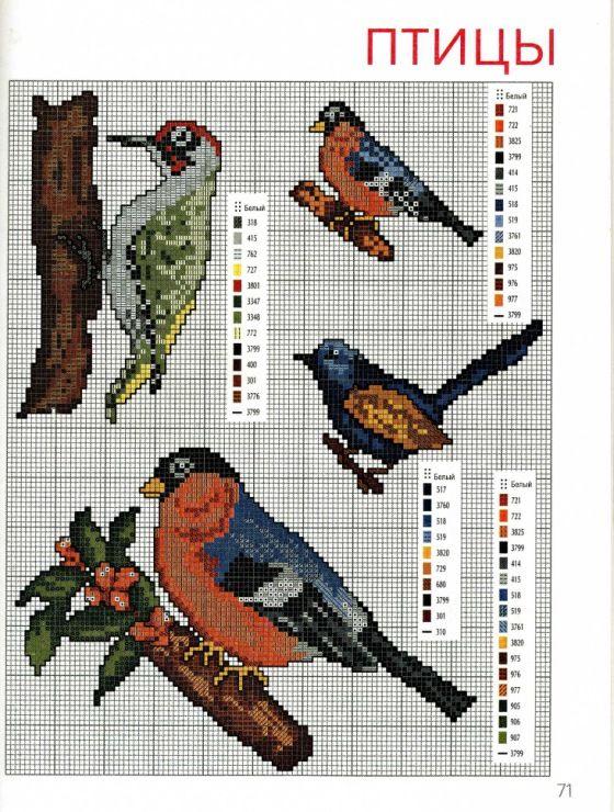 Вышивка крестиком схемы птичек 749