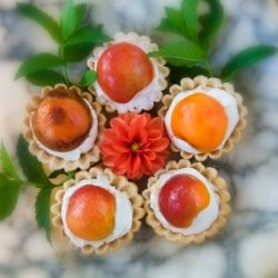 Honey Roasted Apricot Tartlette with Mascarpone Cream