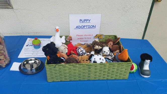 paw patrol party  puppy adoption center kids parties