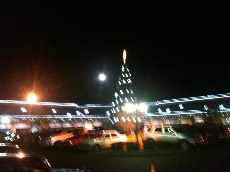 Luna y Árbol de Navidad. Chía, Cundinamarca.