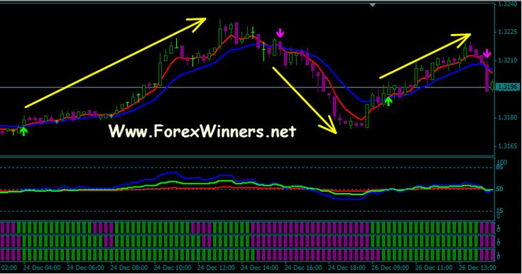 Forex winners website