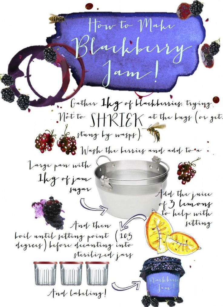 Pickled Blackberry Sauce Recipes — Dishmaps