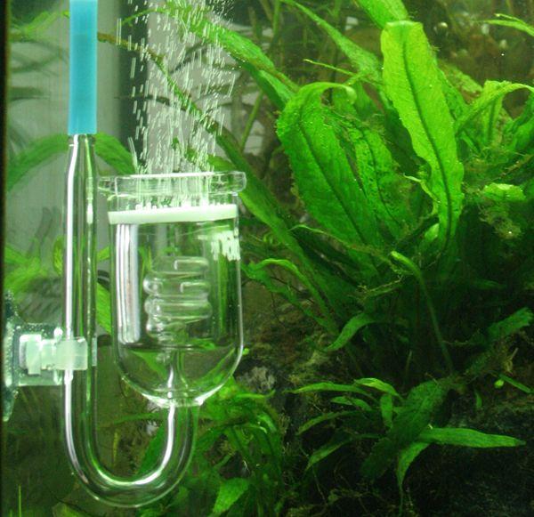 Dosing co2 in aquarium for Aquarium co2