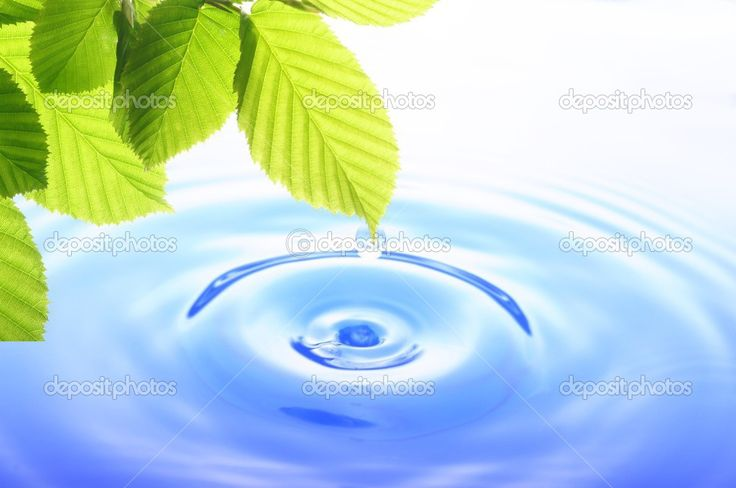 zen water - Google SearchZen Water Images