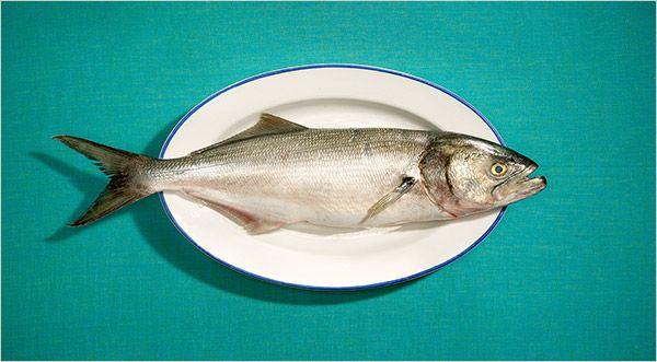 Smoked Bluefish pate. The Cheat - Something Fishy - NYTimes.com