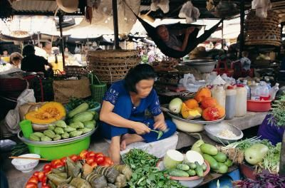 How to Buy Organic Garcinia Cambogia