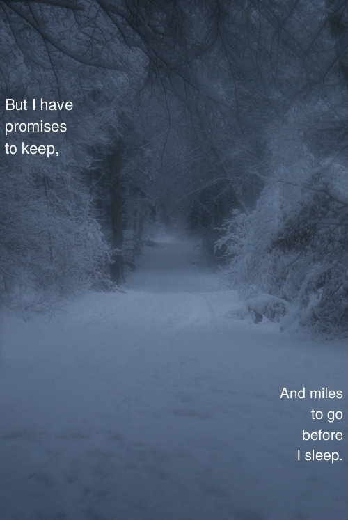 acquainted with the night robert frost anlysis essay Robert frost's poem acquainted with the night sets a tone of loneliness, acceptance, and depression, all in one throughout his tercet poem acquainted with the night is a sonnet written in terza rima, a rhyme scheme that generally suggests a.