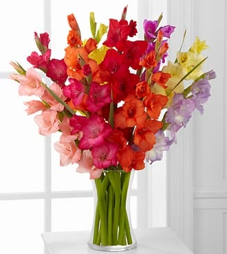 Rainbow Gladiolus Wedding Flowers Pinterest