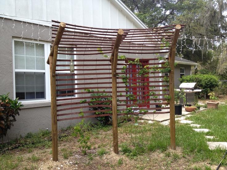 Simple and modest re diy grape arbor vegetable garden for Diy garden arbor designs