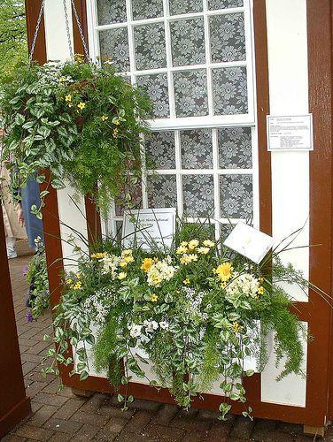 Window Box Way 5