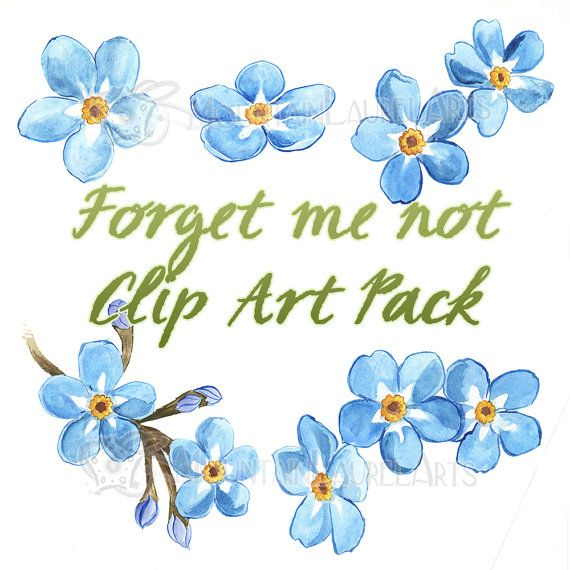 Blue Flower Forget me not Watercolor Clipart by mtnlaurelarts, $4.99