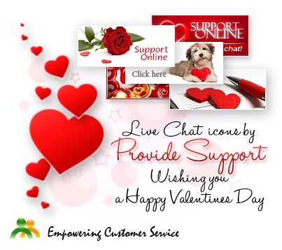 valentine one support
