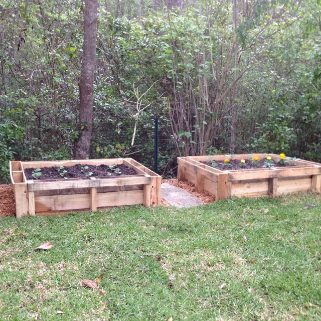 Raised garden beds made from pallets.  House Crafts  Pinterest