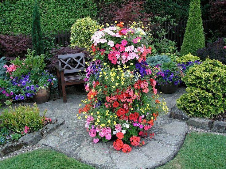 Container gardening   Garden ideas   Pinterest