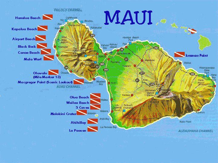 Scuba diving maui hi landscape images pinterest for Maui fishing store