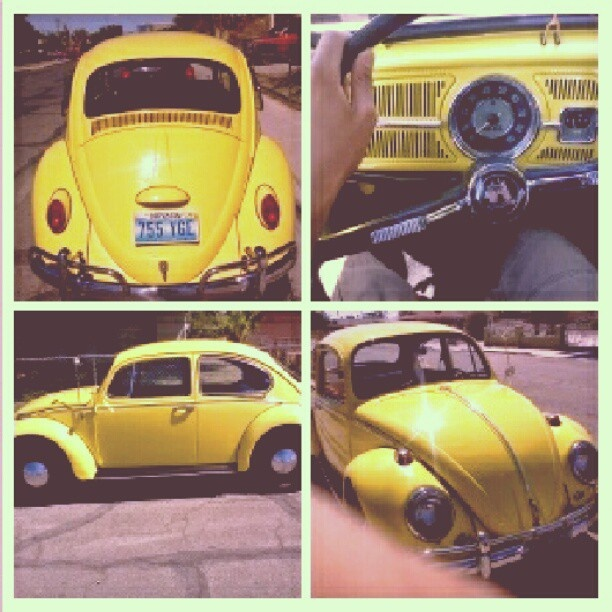 1965 VW Bug, she's beautiful..Cheap Used Cars for Sale by Owners visit http://www.usedcarsexchange.com/used-cars-for-sale-by-owners.php