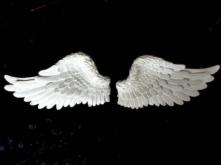Detailed resin angel wings wall art in cream coloured for Angel wings wall decoration uk