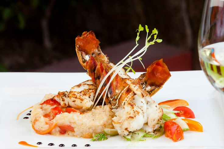 Parmesan baked lobster tail with basil butter and lemon risotto at Don ...