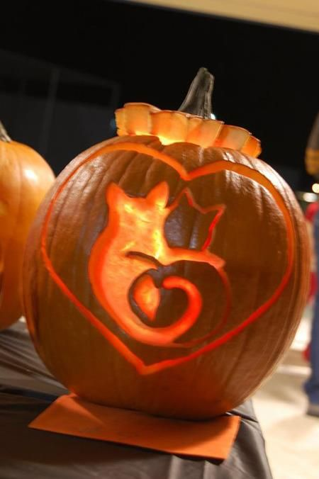 cool cat pumpkin carving gsd 39 s pinterest
